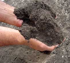 hydromentia-compost